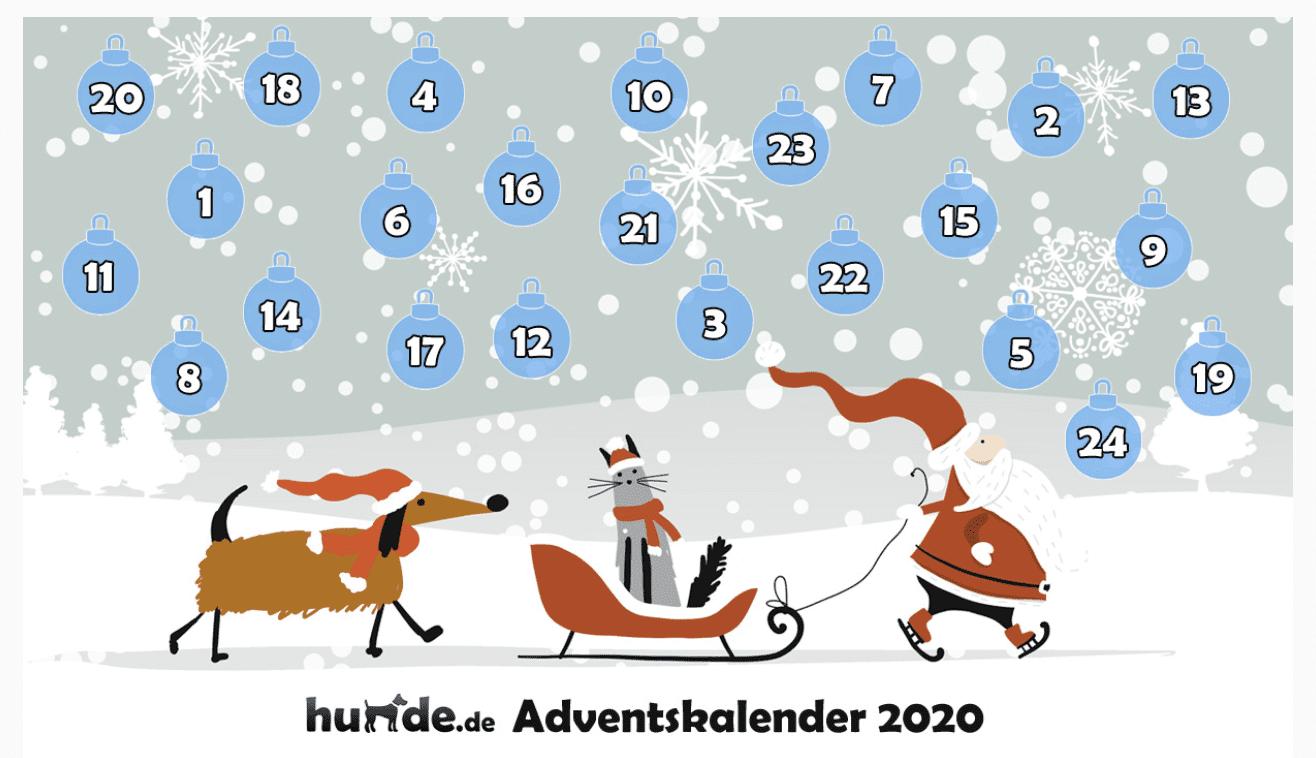 hunde.de Adventskalender-Gewinnspiel