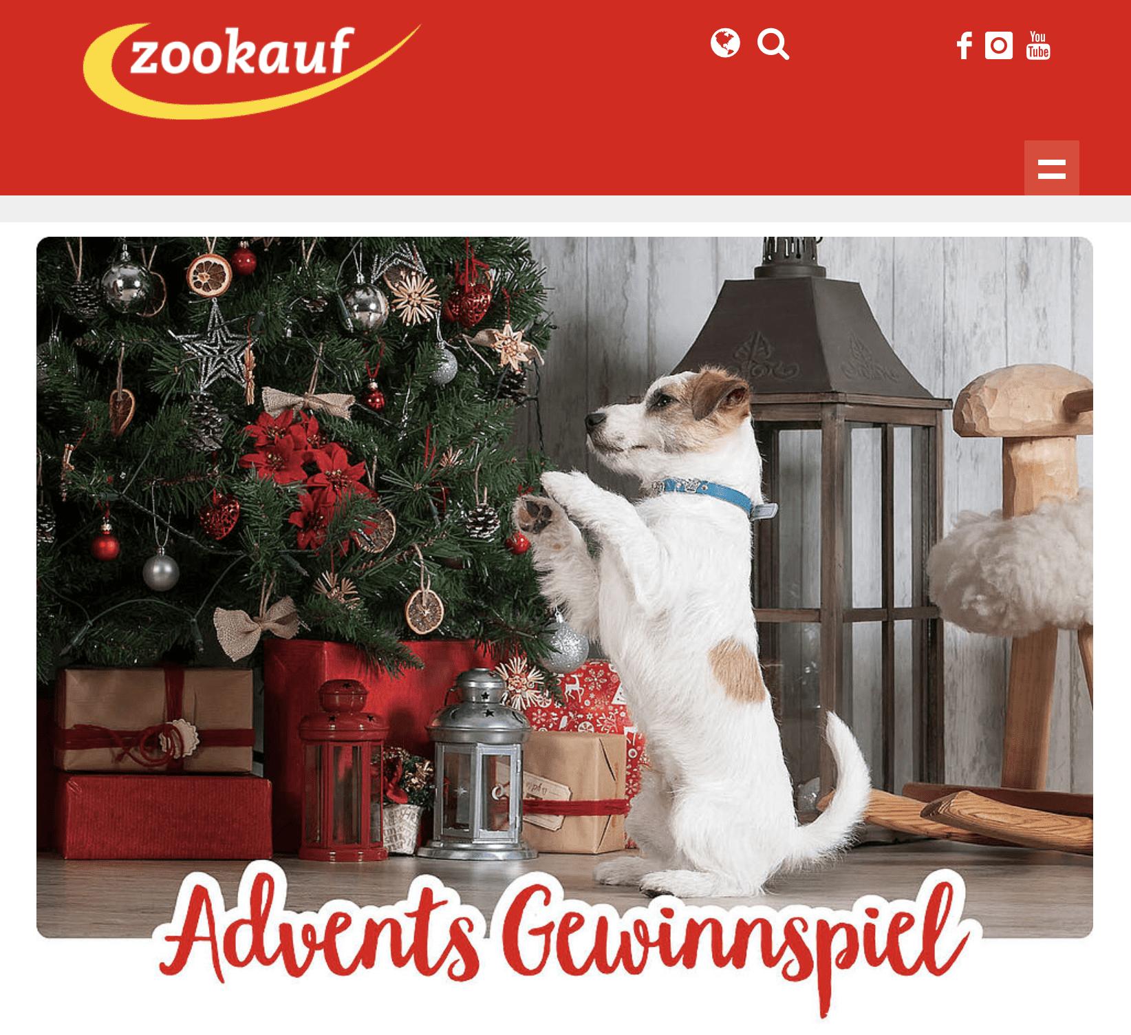Zookauf Cases Adventskalender-Gewinnspiel