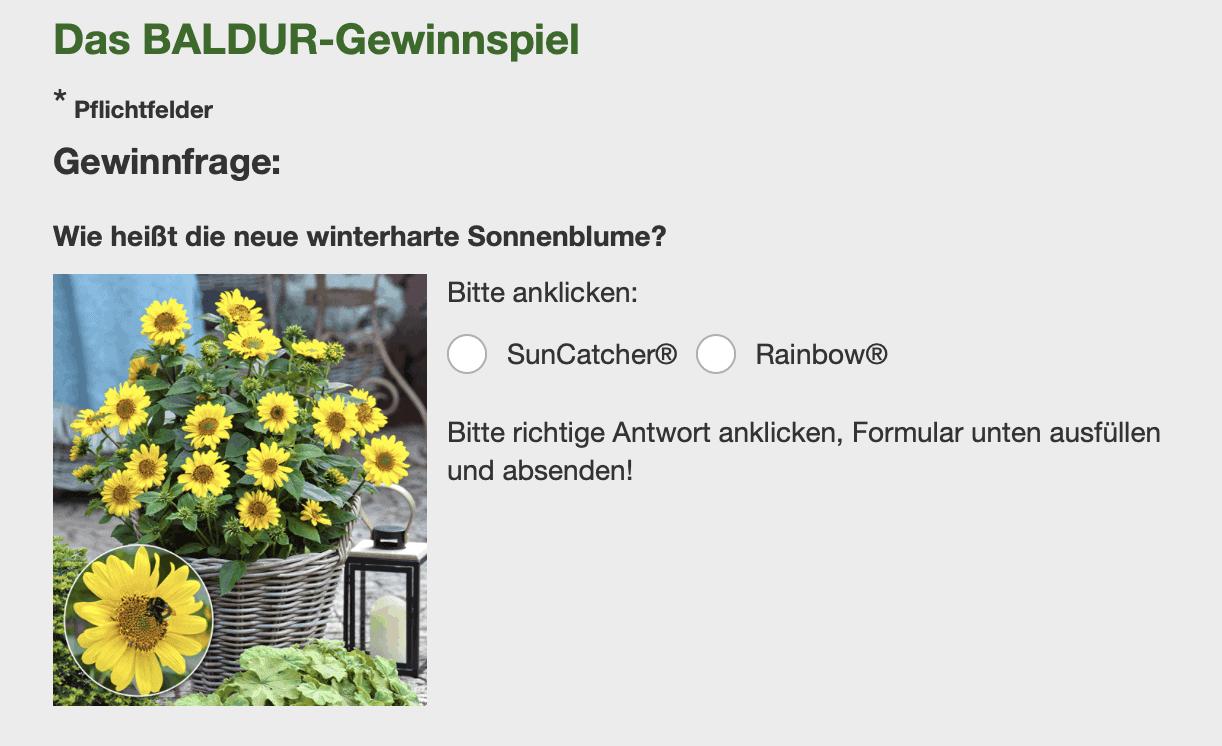 "Gewinnspiel-Cases ""Baumärkte & Gartencenter"" Baldur"